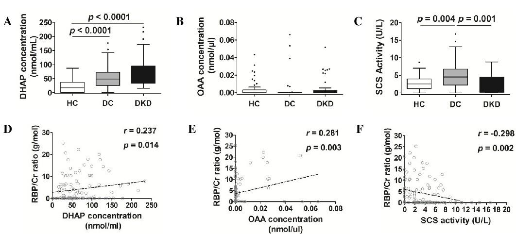 The Mitochondria-Targeted Metabolic Tubular Injury in Diabetic